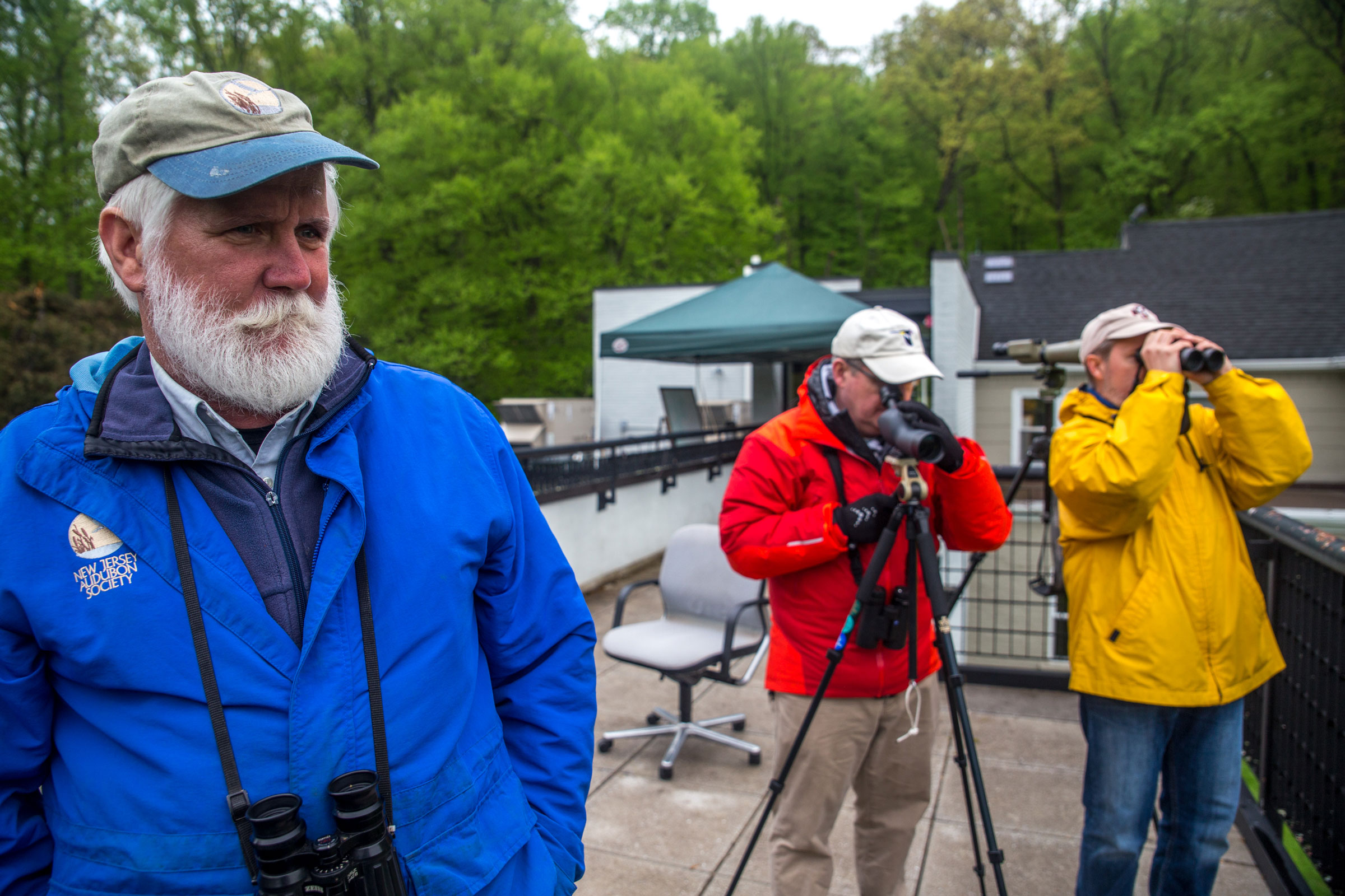Mike Anderson (left) listens for distant sparrows while Dan and Ron Barkley scope the canopy. Camilla Cerea/Audubon
