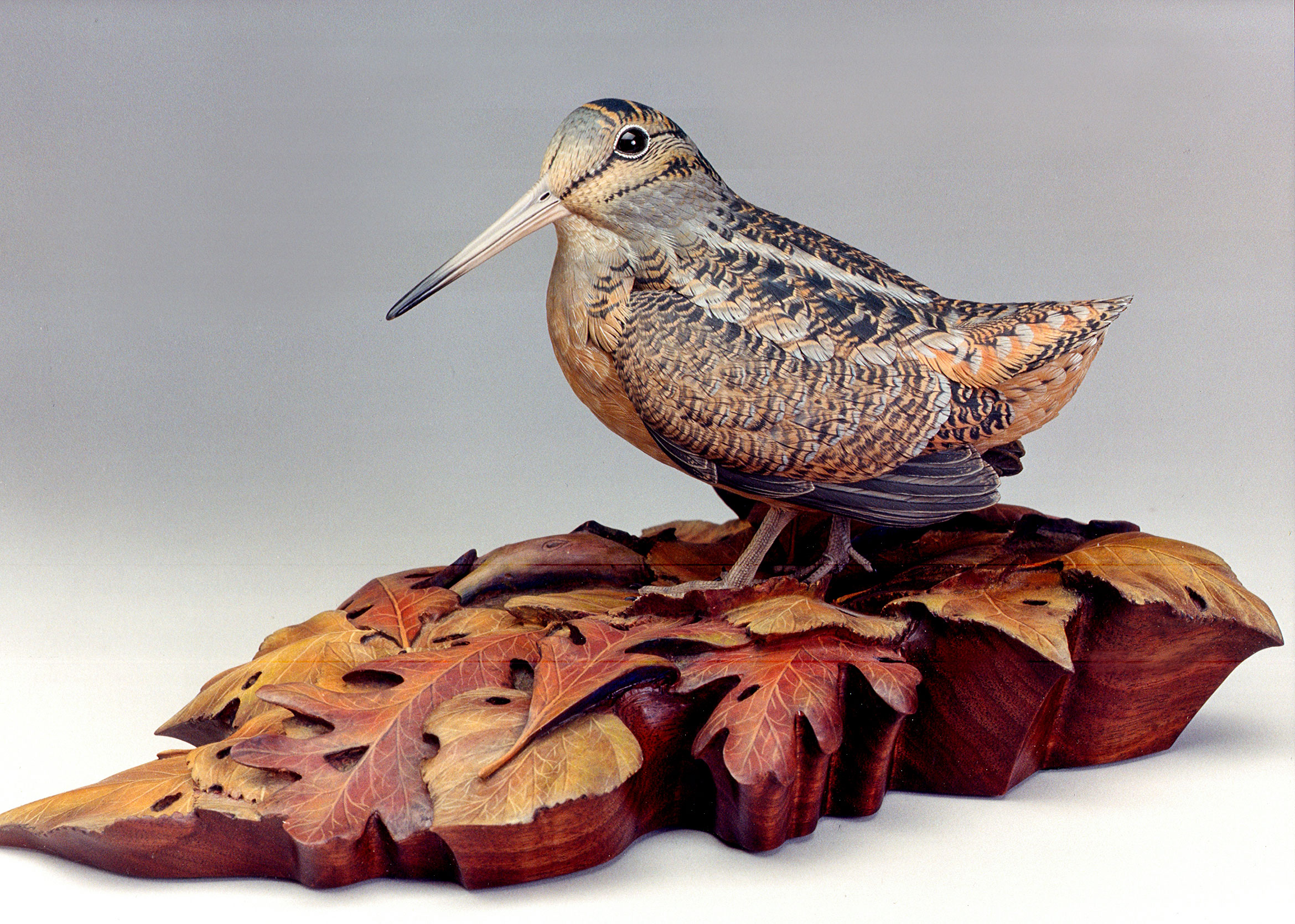 An American Woodcock by Pat Godin. Courtesy of the artist